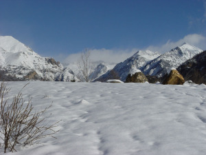 nieve 5