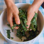Hojas de kale propiedades y recetas