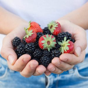 moras y fresas (1)